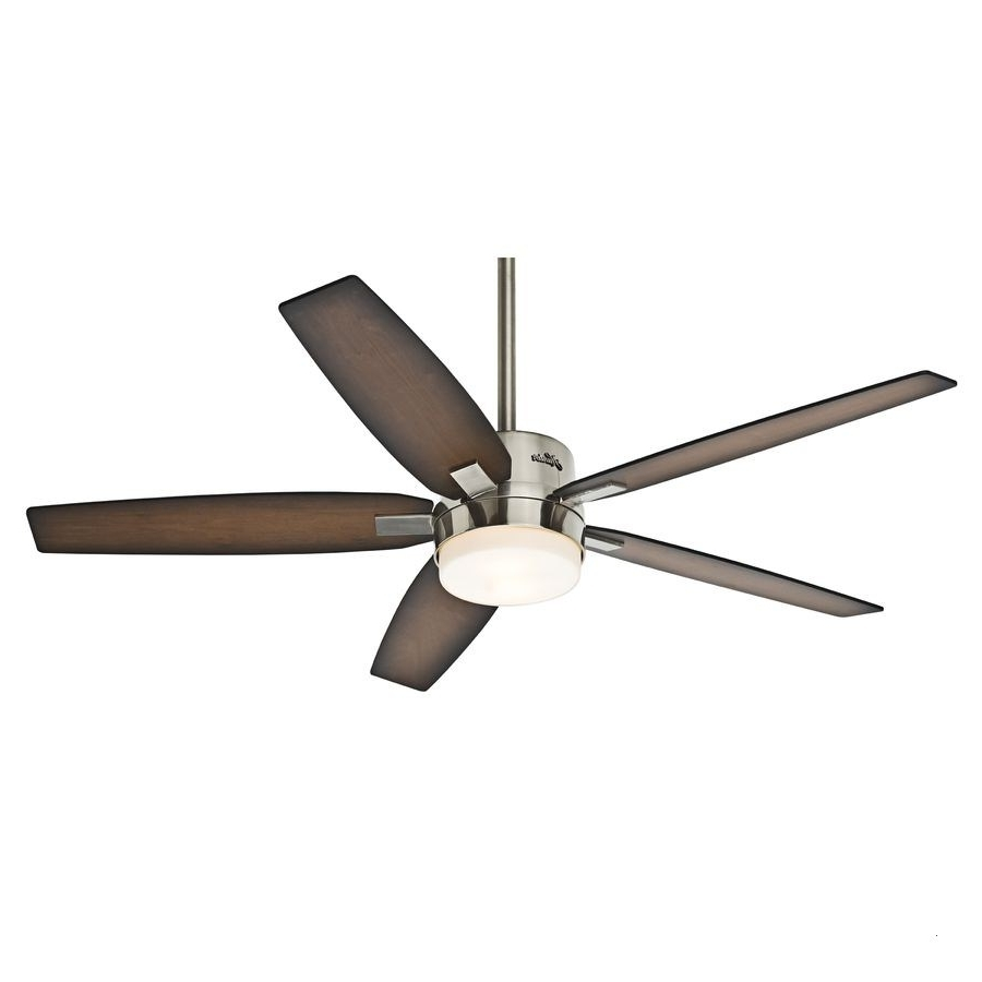 Outdoor Ceiling Fans With Lights And Remote Beautiful Shop Hunter Pertaining To Favorite Hunter Outdoor Ceiling Fans With Lights And Remote (View 17 of 20)