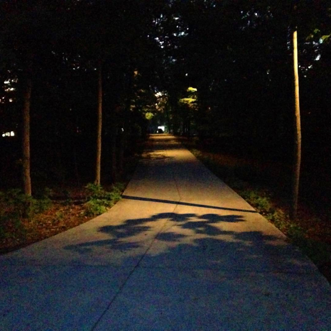 Outdoor Driveway Lanterns Throughout Most Up To Date Outdoor Driveway Lighting Fixtures – Outdoor Lighting Ideas (View 4 of 20)