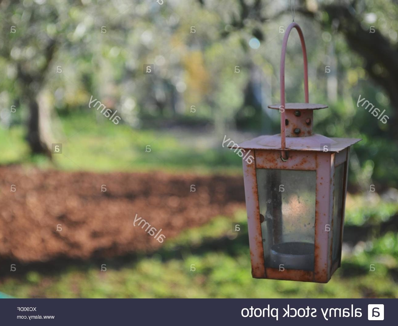 Outdoor Hanging Oil Lanterns With Current Old Antique Oil Lantern Hanging Stock Photos & Old Antique Oil (View 5 of 20)