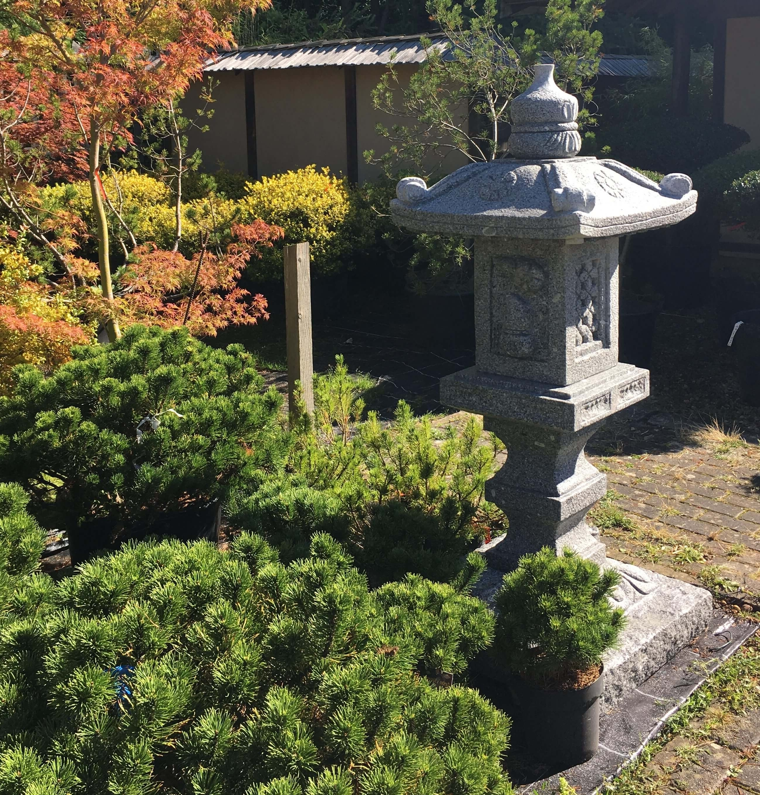 Outdoor Japanese Lanterns For Sale Regarding Most Up To Date Japanese Stone Garden Lanterns For Sale Uk Statues Statue Lantern (Gallery 18 of 20)