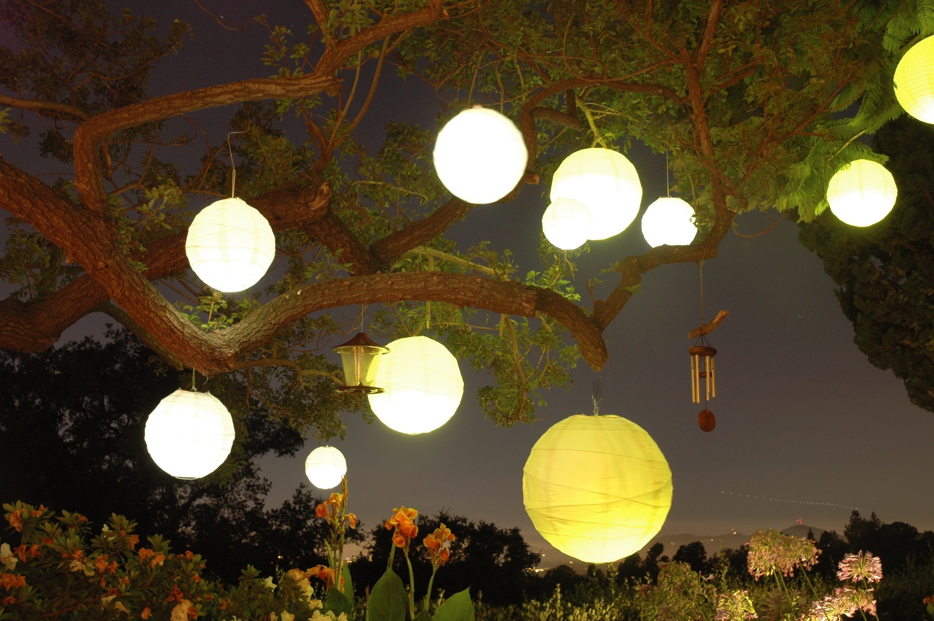 Outdoor Paper Lanterns Pertaining To Trendy Sleek Wedding Diy Hanging Tree Lanterns Easy Diy Hanging Lanterns (View 11 of 20)