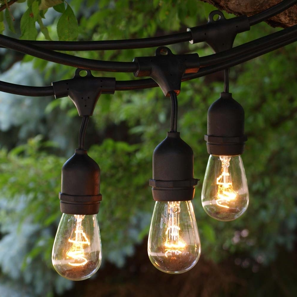 Popular 100' Black Outdoor String Light & 11S14 Clear Bulb, Suspended Socket Throughout Outdoor Empty Lanterns (View 15 of 20)