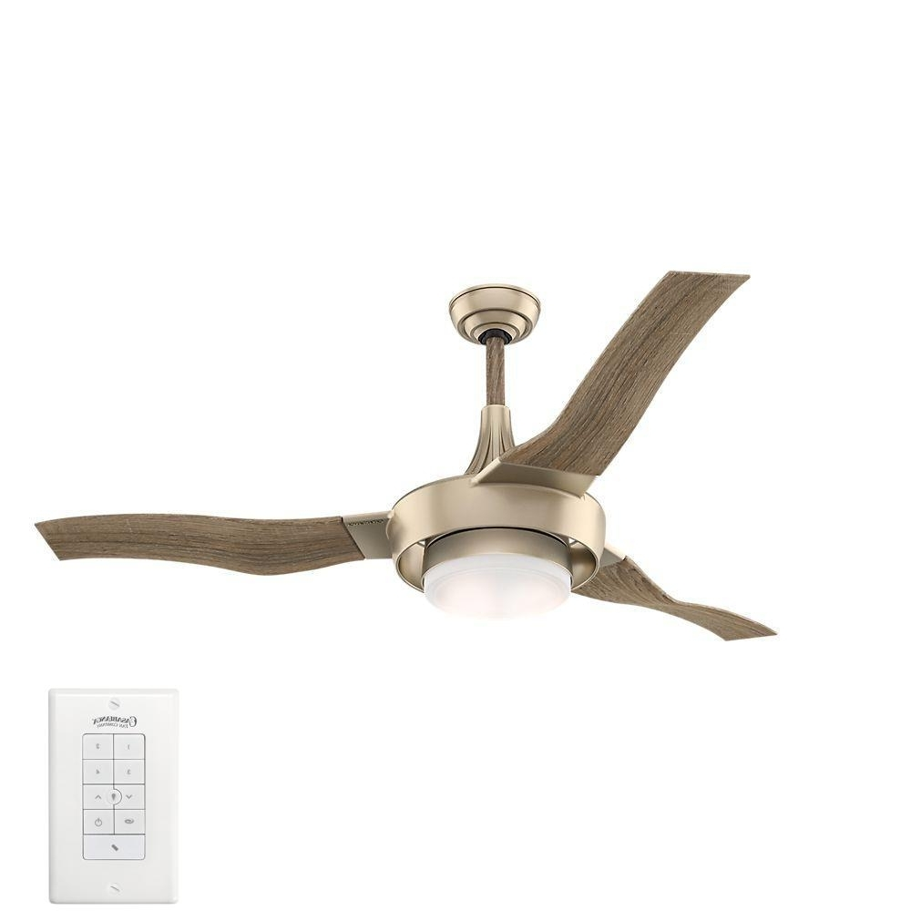 Preferred Gold Coast Outdoor Ceiling Fans For Casablanca Perseus 64 In (View 14 of 20)