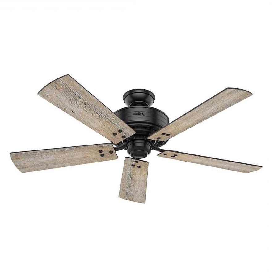 Recent Hunter 55078 Cedar Key 1 Led Light 52 Inch Outdoor Ceiling Fan In With 52 Inch Outdoor Ceiling Fans With Lights (Gallery 11 of 20)