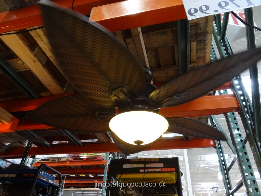 Recent Tommy Bahama Cabrillo Cove Ceiling Fan In Outdoor Ceiling Fans At Costco (Gallery 1 of 20)
