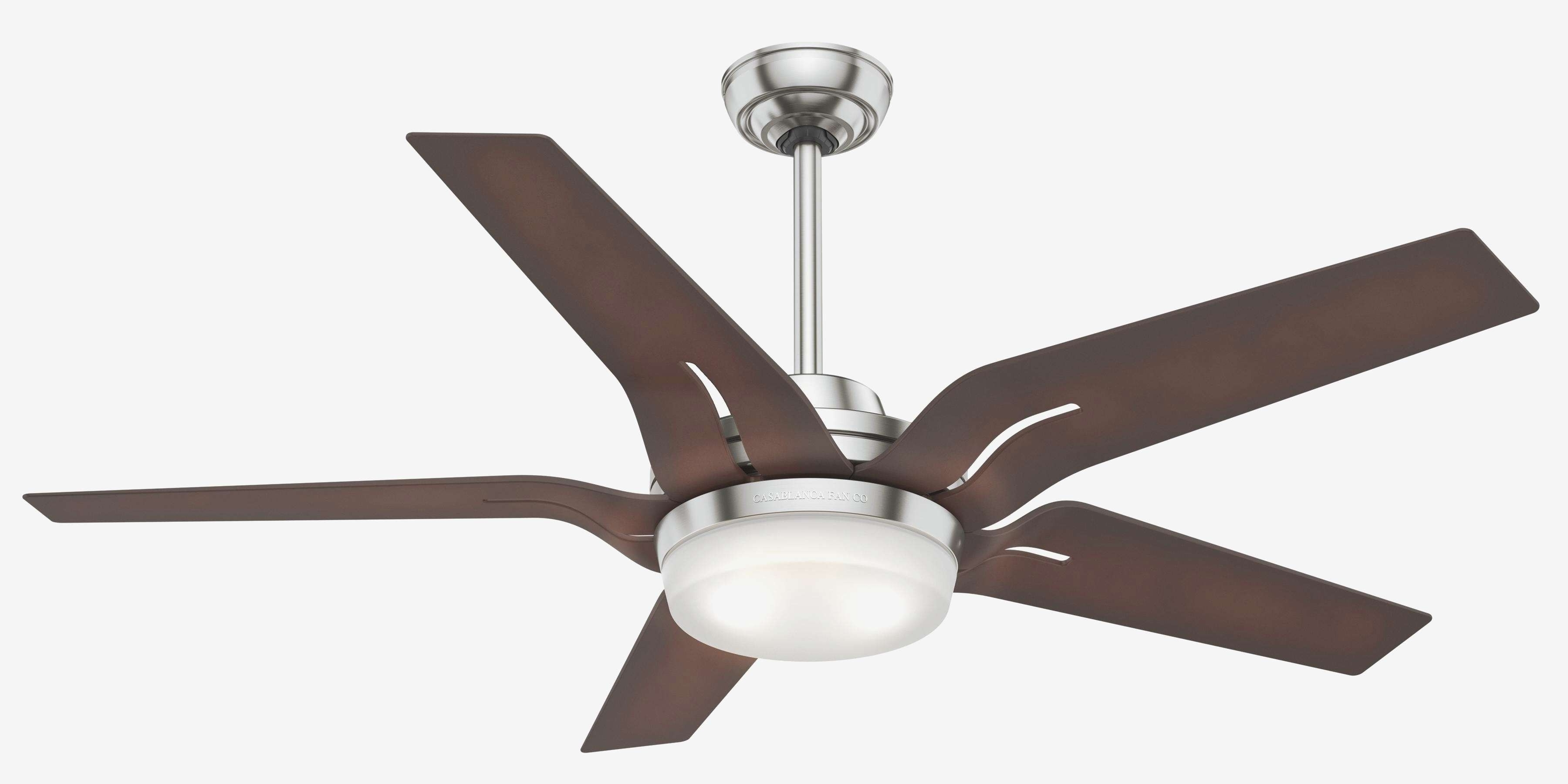 Trendy Calmly Outdoor Ceiling Fan No Light Lighting Design Ideas Ceiling For Outdoor Ceiling Fans For Windy Areas (View 13 of 20)