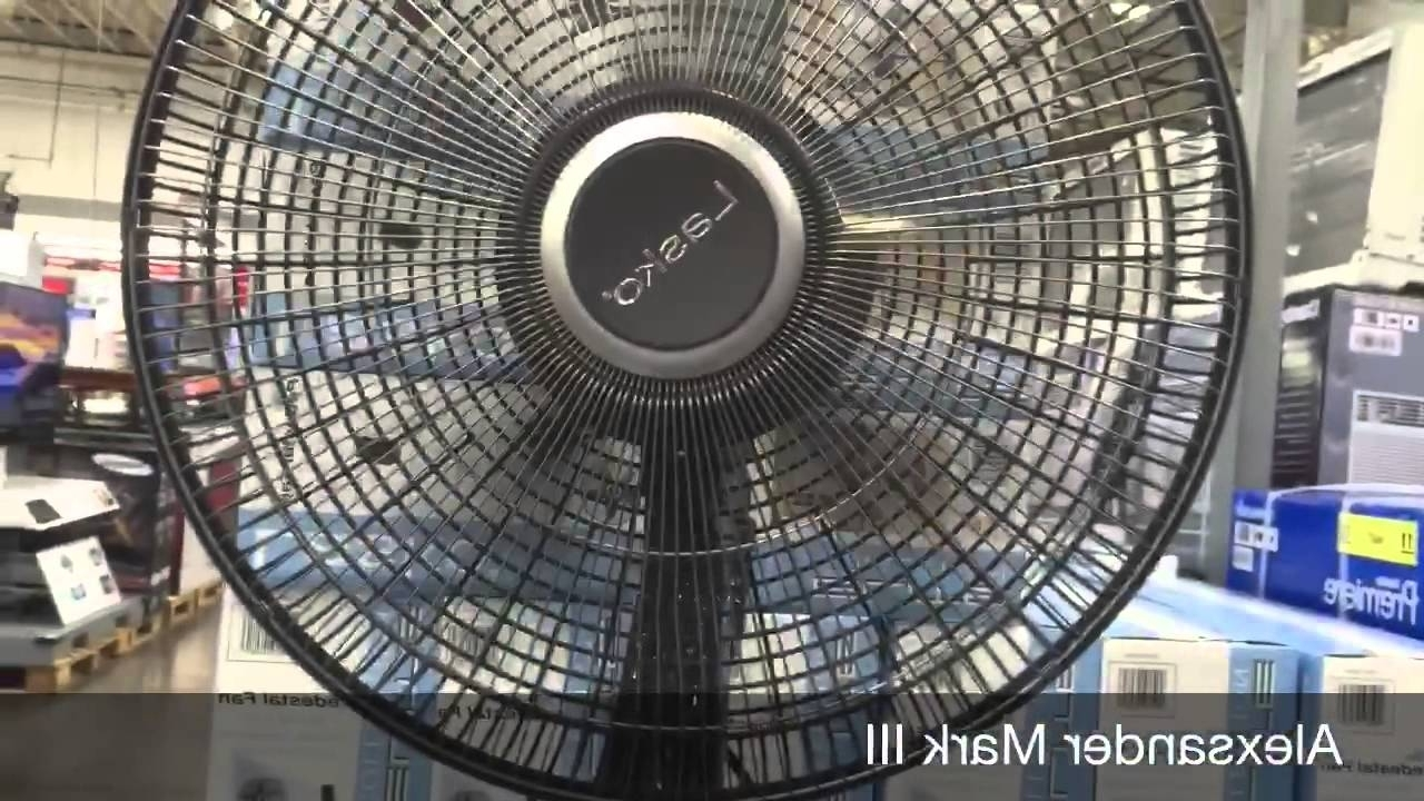 Well Known Lasko Fans At Costco (View 18 of 20)