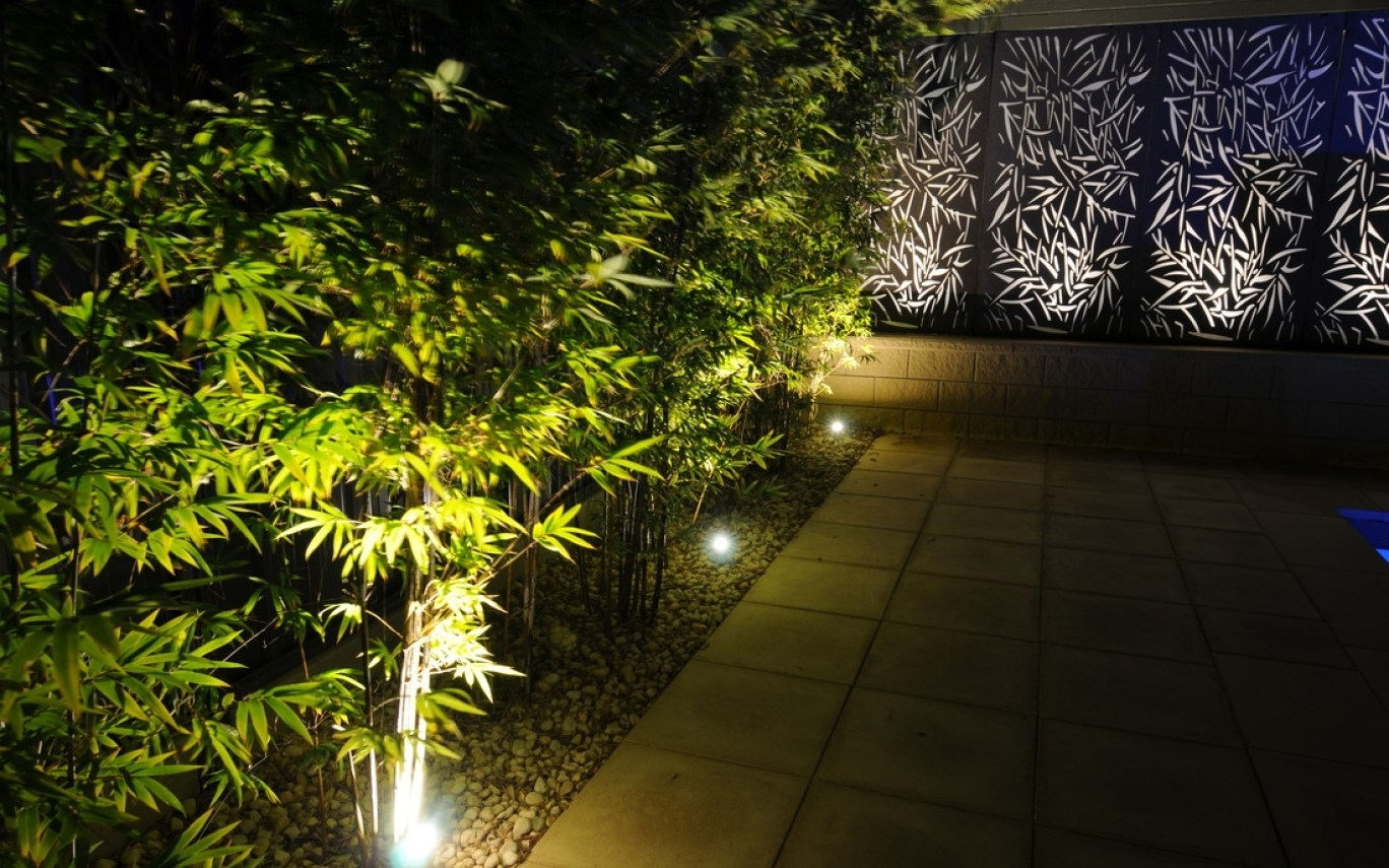 Well Known Outdoor Yard Lanterns Intended For Outdoor Tree Lighting Ideas Trees Lighted Christmas Decoration (View 19 of 20)