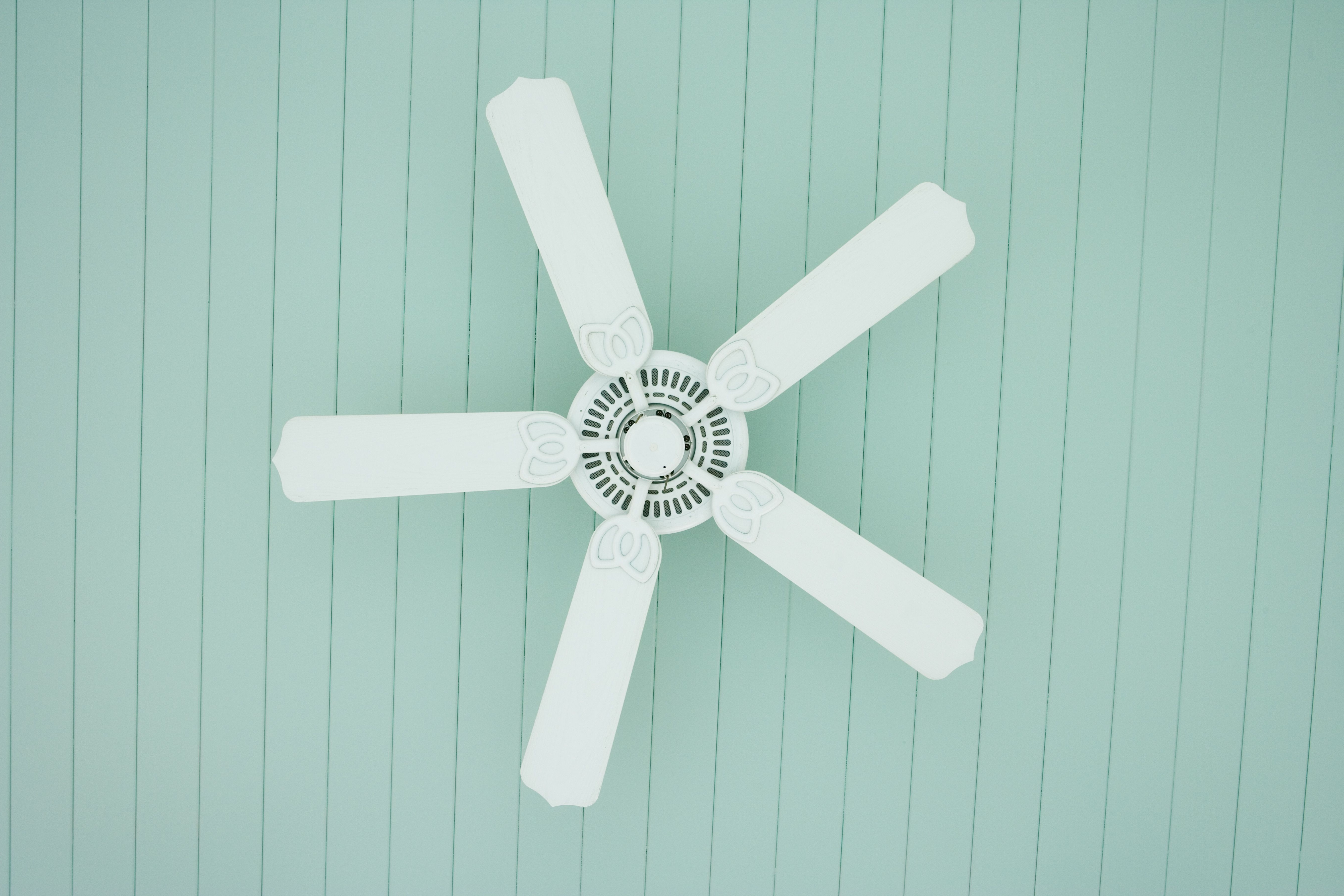 Well Known The 7 Best Ceiling Fans To Buy In 2018 Inside Outdoor Ceiling Fans Under $ (View 19 of 20)