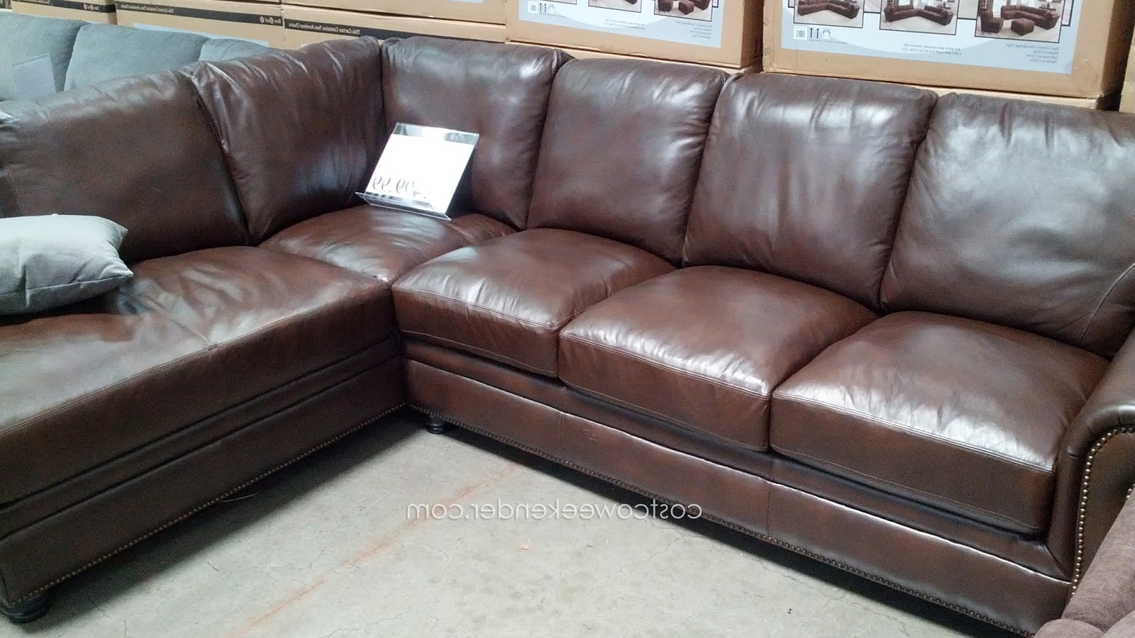 Cohen Down 2 Piece Sectionals Pertaining To Favorite Marks & Cohen Savoy 2 Piece Leather Sectional Couch (View 3 of 20)
