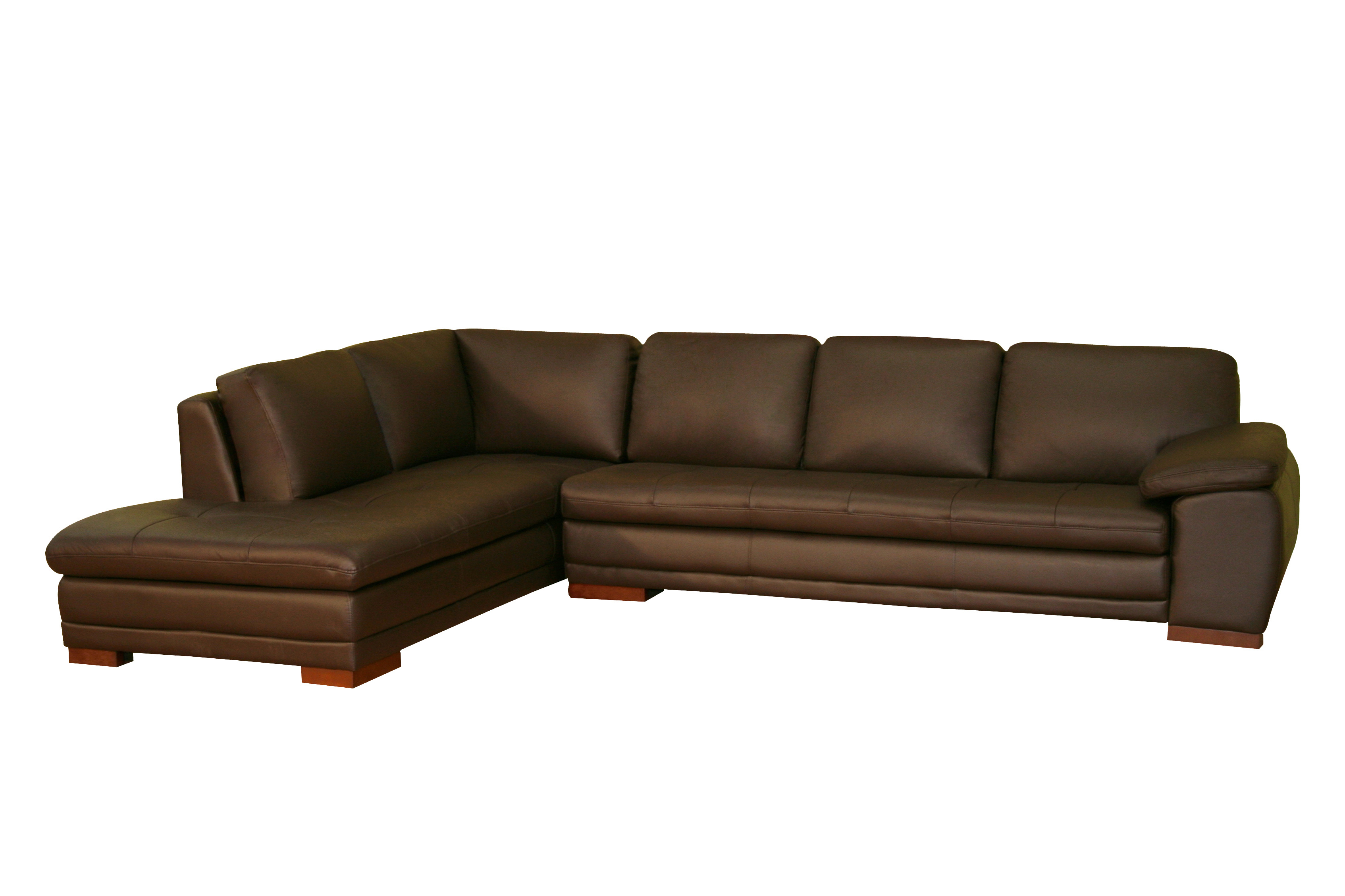 Fashionable Sectional Sofa With Chaise Lounge (Gallery 11 of 20)