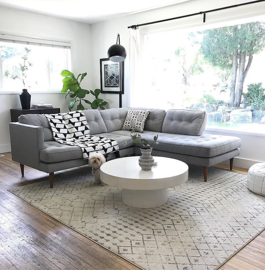 I Spy With My Little Eye Sunday Hideaways With Our Fur Babies Within 2019 Shroom Coffee Tables (View 7 of 20)