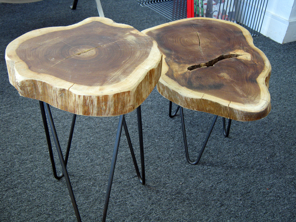 Latest Sliced Trunk Coffee Tables Intended For Round Wood Coffee Table With Storage : The Perfect Nice Tree Stump (View 4 of 20)