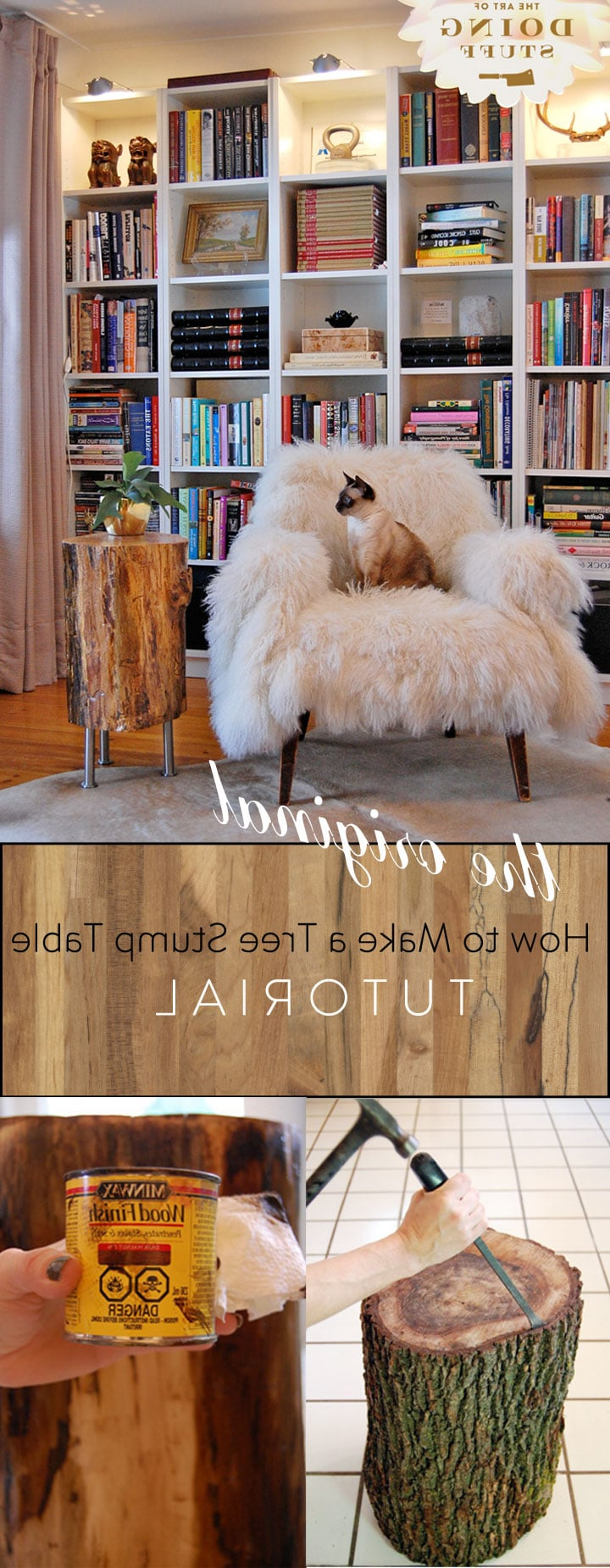 Sliced Trunk Coffee Tables With Regard To 2019 Stumped How To Make A Tree Stump Table (View 14 of 20)