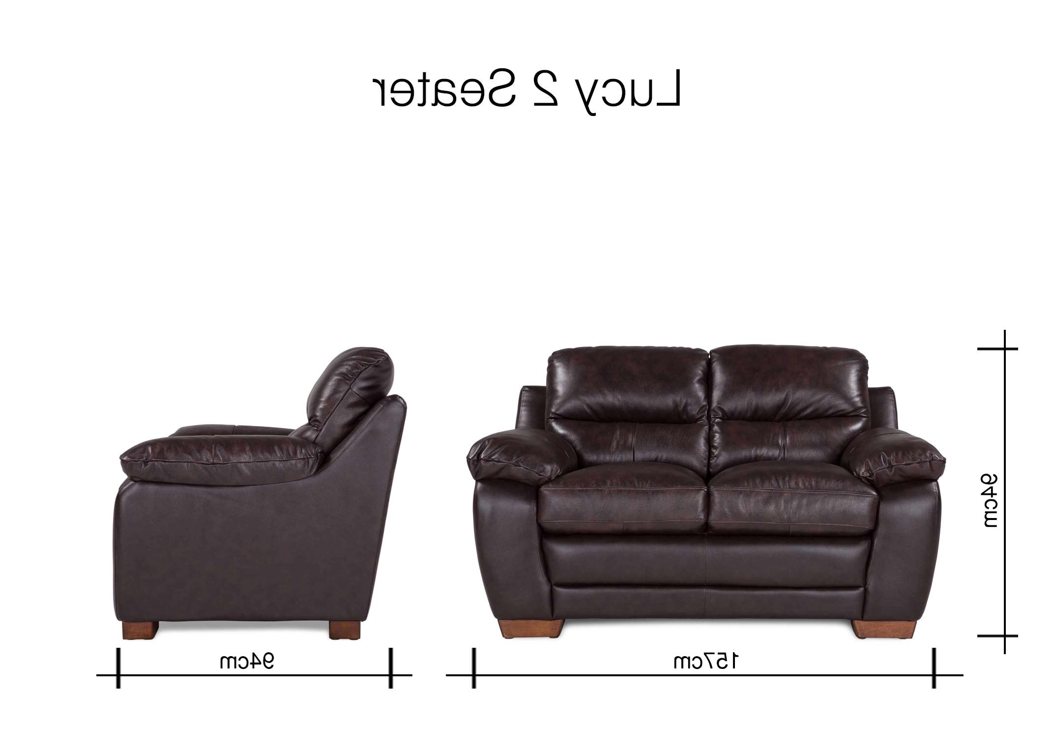 Lucy Grey Sofa Chairs Pertaining To Current Contemporary Brown Leather 2 Seater Sofa – Lucy – Ez Living Furniture (Gallery 20 of 20)