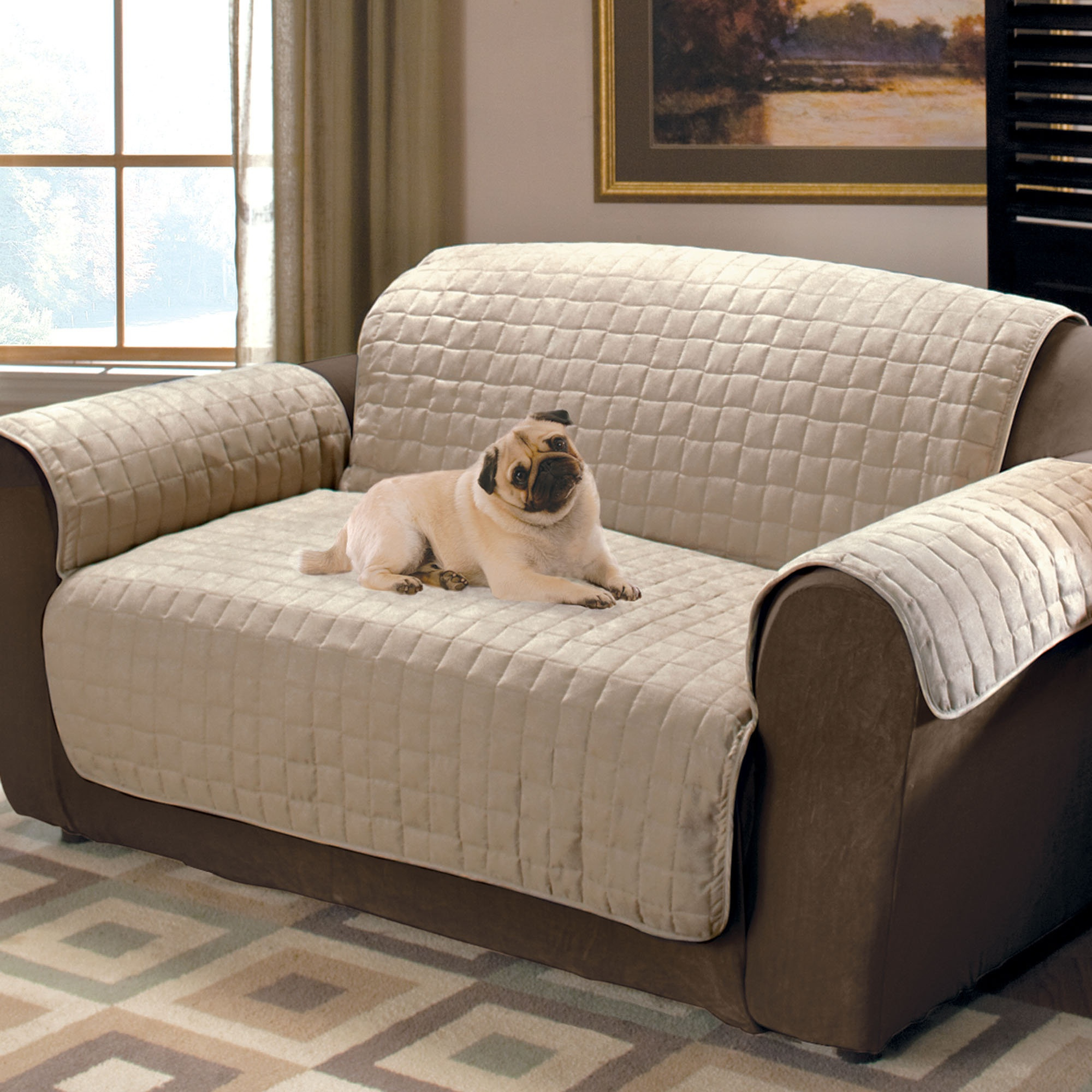 Sofa And Chair Covers With Regard To Most Up To Date Furniture: Sofa Covers At Walmart For A Slightly Loose And Casual (Gallery 7 of 20)