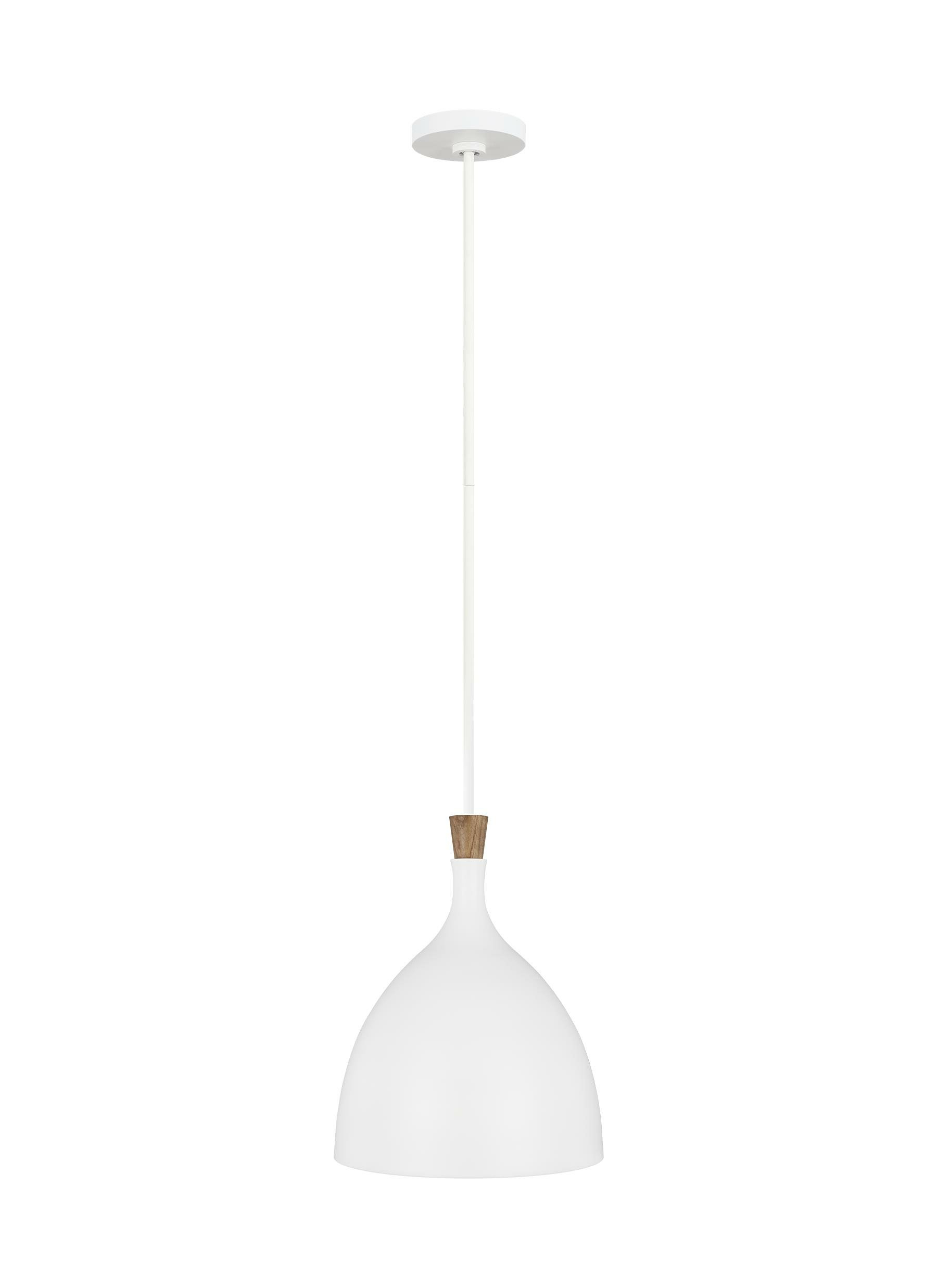 2020 Monadnock 1 Light Single Dome Pendants In Darwin 1 Light Single Dome Pendant (View 1 of 20)