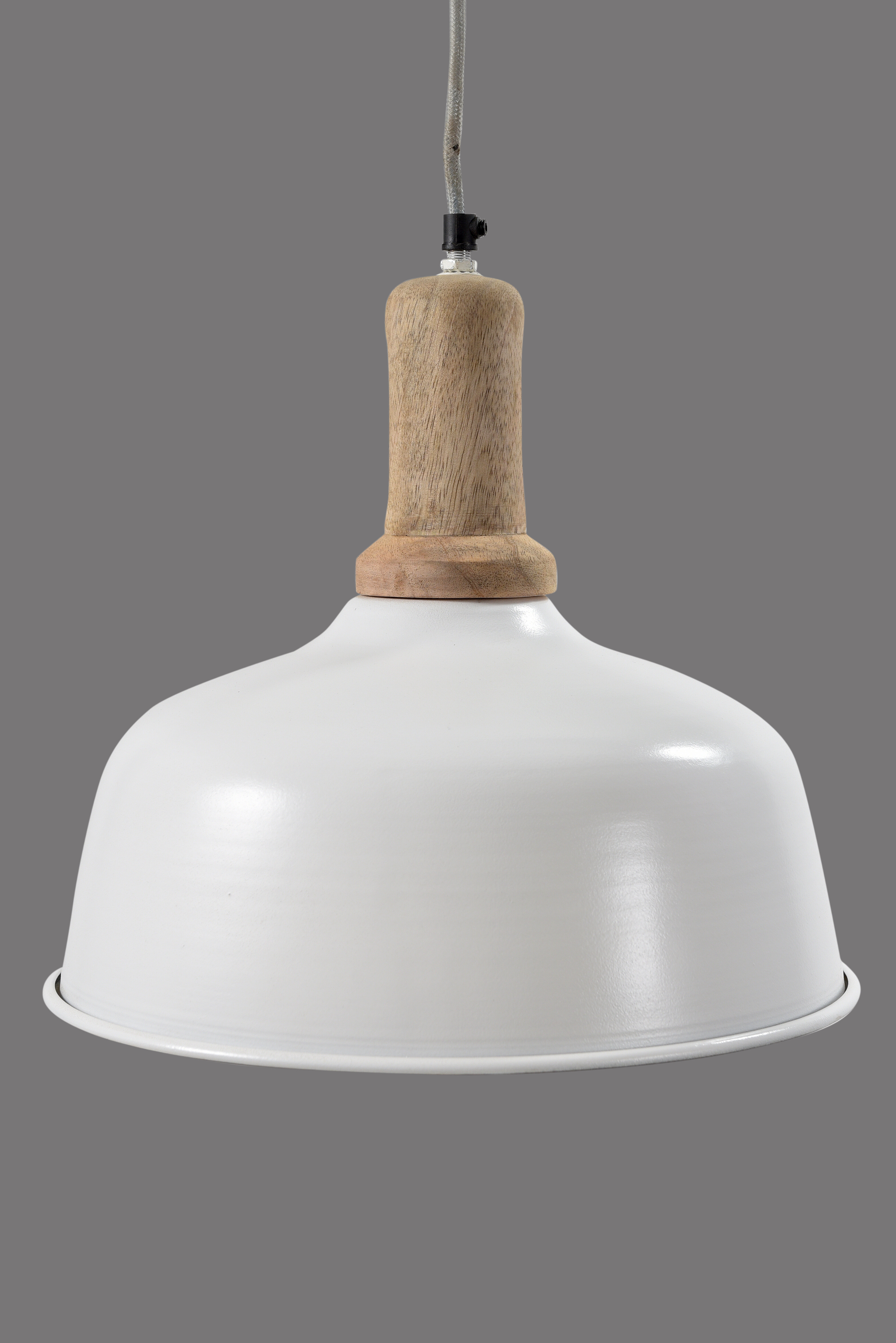 Best And Newest 1 Light Single Dome Pendants For Glenam 1 Light Single Dome Pendant (View 19 of 20)