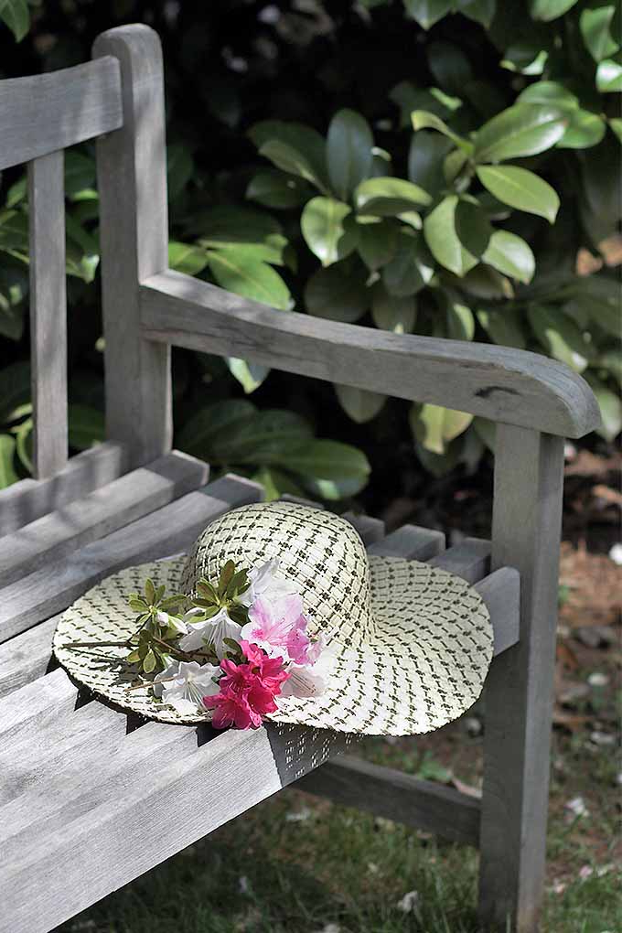 Current The Best Garden Benches Reviewed In (View 14 of 20)