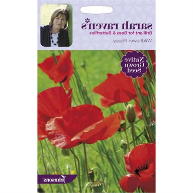 Current Wilde Poppies Ceramic Garden Stools Inside Sarah Ravens Wildflower Poppy Seeds (View 13 of 20)