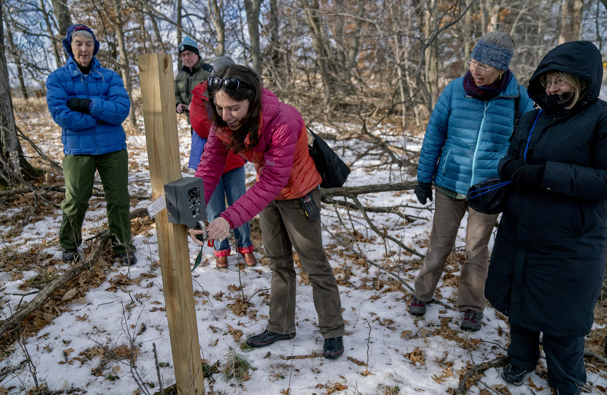 Well Liked Armchair Naturalists Help Minnesota Researchers Classify More Inside Deer Trail Armchairs (View 15 of 20)
