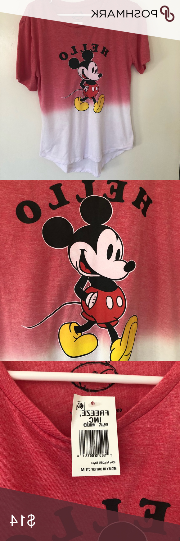 Belleair Bluffs Outdoor Barn Lights In Preferred Disney Mickey Mouse Ombré Graphic Shirt (View 14 of 17)