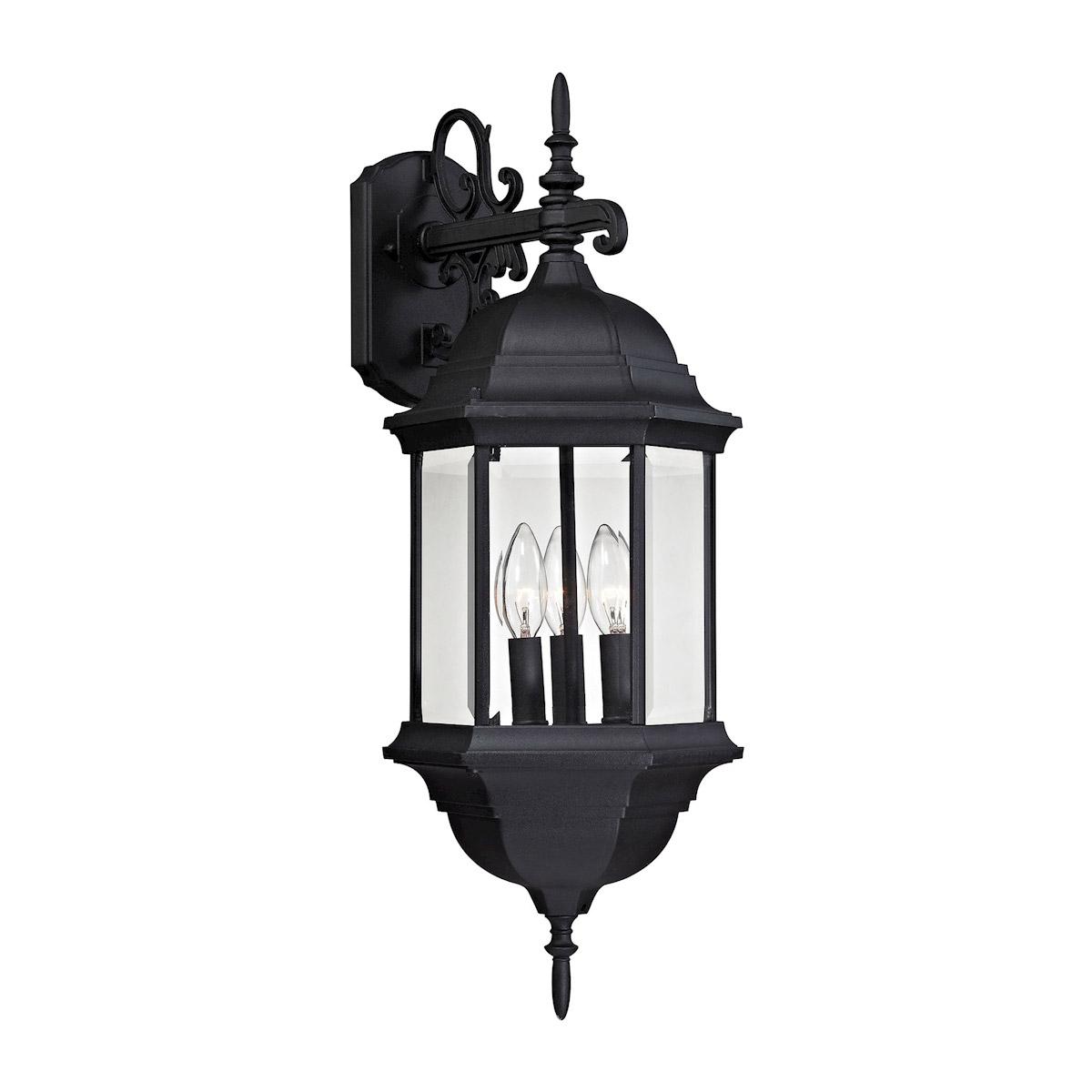 Binegar Matte Black Outdoor Wall Lanterns Regarding Recent Thomas Lighting 8613ew/65 Spring Lake Outdoor Wall Light (View 9 of 20)