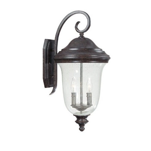 Current Capital Lighting 9513nt Outdoor Wall Lantern With Seeded Inside Anner Seeded Glass Outdoor Wall Lanterns (View 12 of 20)