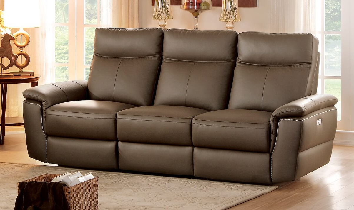 Power Reclining Sofas Regarding Newest Olympia Top Grain Raisin Leather Power Double Reclining (View 15 of 20)