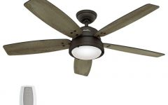Indoor Outdoor Ceiling Fans with Lights and Remote