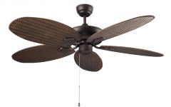 Wicker Outdoor Ceiling Fans with Lights